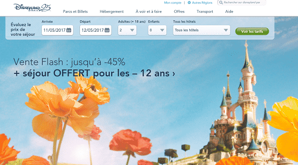 Vente Flash Sejour Disneyland